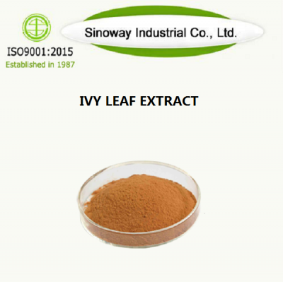 IVY LEAF EXTRACT Supplier -Sinoway