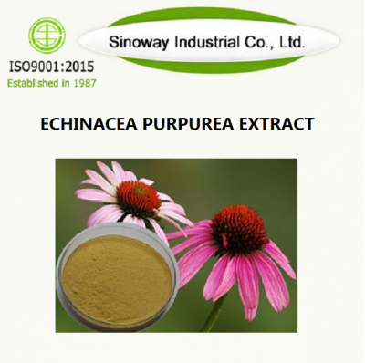 ECHINACEA PURPUREA EXTRACT Supplier -Sinoway